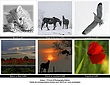 Cartes_Photography Corin S.jpg
