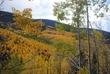 Aspen Vista Trail 1.jpg