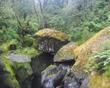 Chasm Rocks.jpg
