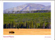 Sacred Places-20 pg Book.jpg