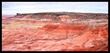 Petrified Forest Panorama I.jpg