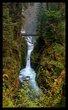Sol Duc Falls Spring II.jpg