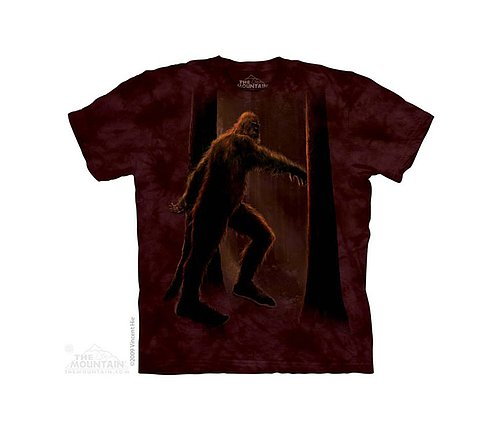 15-3065-kids-t-shirt.jpg