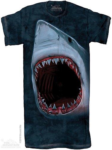 40-3103-nightshirt.jpg