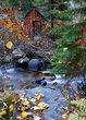 10 mile creek 2.jpg