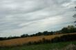 Farm on a cloudy day 0176.jpg