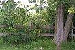 0959 Fence1.jpg