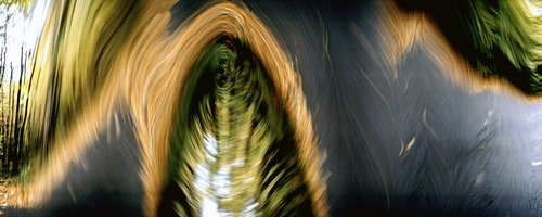 Bicycle Trip -  Untitled No.5-16x32 Inch Archival Inkjet Print-Edition 5.jpg