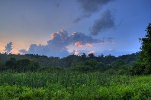 Cloudscape Verdant Indigo.jpg
