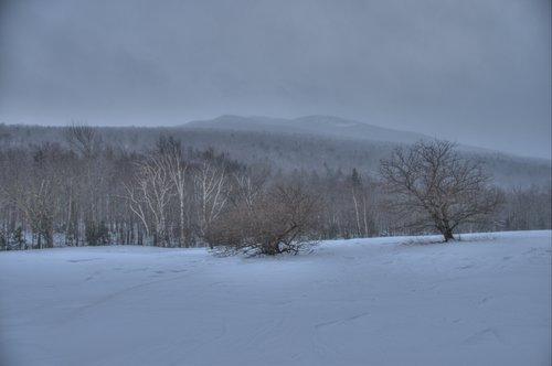 Eleven below zero 1200.jpg