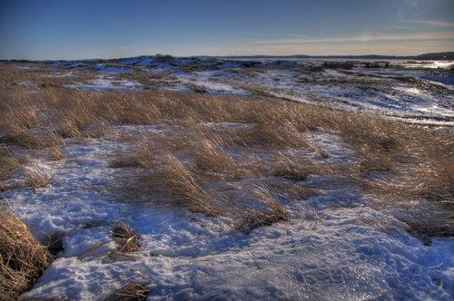 Glowing Dune Fields 1200.jpg