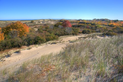 Autumn in the Dunes.jpg