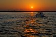 Amber Waves (DLM_20140522_019_0265_6_7_web).jpg