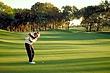 IMG0101 Golf2.jpg