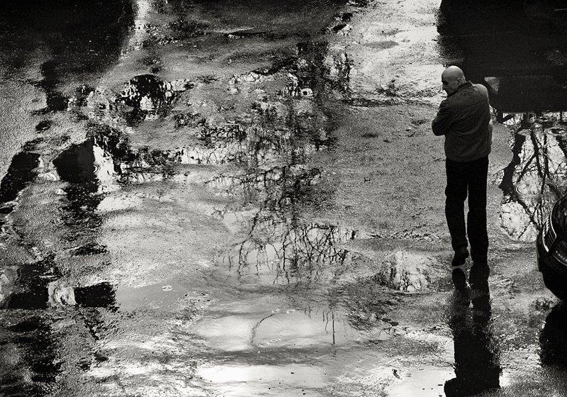 After the Rain                    0320.jpg