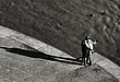 Longer Shadows 6    -   0109.jpg