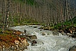 Marble Canyon 2006_06_0713.jpg