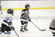 Saints-Timbits-4347.jpg