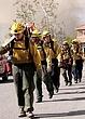CNN Foothill Ranch Fire 10-2007  0017.jpg