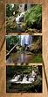 Falling Spring Triptych .2.jpg
