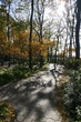 Battery Park fall 2.jpg