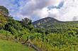 DelawareWaterGap mountain 01A.jpg