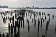 Manhattan Hudson Pillings 01.jpg