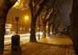 Griffith Snow.jpg
