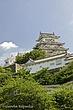 Himeji_Palace1.jpg