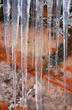 Icicles Along Trail To Observation Point.jpg