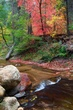 West Fork Oak Creek In Fall 1.jpg
