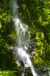 Little Yachats Falls 3854.jpg