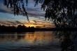Dusk Willow -- Saule du Crepuscule.jpg