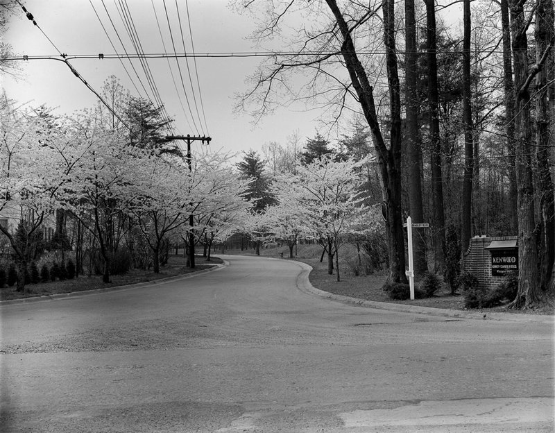 A368-12 Kenwood Cherry Blossoms Kenwood Sign 1939.jpg :: 1939 Kenwood Cherry Blossoms