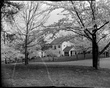 A368-2 Kenwood Cherry Bloosoms Home 1939.jpg