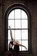 lily window 1.jpg