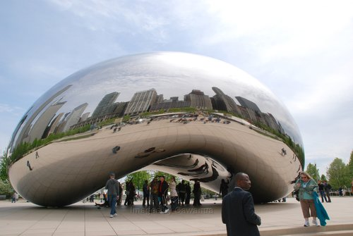 Reflections of Chicago 1.jpg