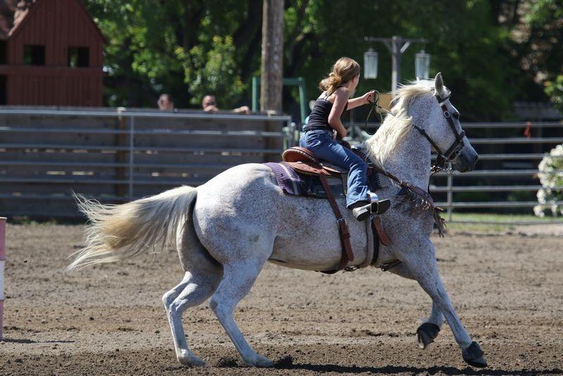 Butte Star Rodeo 05212017 016.jpg