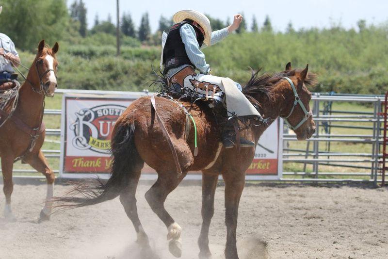 Wild West Buckers 05062017 766.jpg