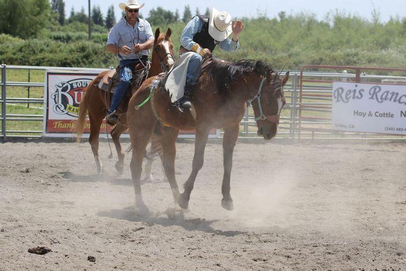 Wild West Buckers 05062017 776.jpg