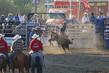 Marysville Stampede 2017 Day 2 1127.jpg