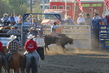 Marysville Stampede 2017 Day 2 1133.jpg