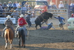 Marysville Stampede 2017 Day 2 1159.jpg