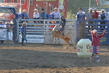 Marysville Stampede 2017 Day 2 1168.jpg