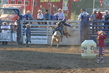 Marysville Stampede 2017 Day 2 1170.jpg