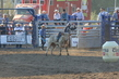 Marysville Stampede 2017 Day 2 1172.jpg