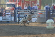 Marysville Stampede 2017 Day 2 1173.jpg