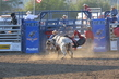 Marysville Stampede 2017 Day 2 1217.jpg