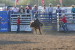 Marysville Stampede 2017 Day 2 1225.jpg