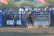 Marysville Stampede 2017 Day 2 1281.jpg